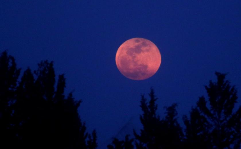 Днепряне увидят Розовую Луну и узнают, что будет за окнами 8 октября ПРОГНОЗ ПОГОДЫ
