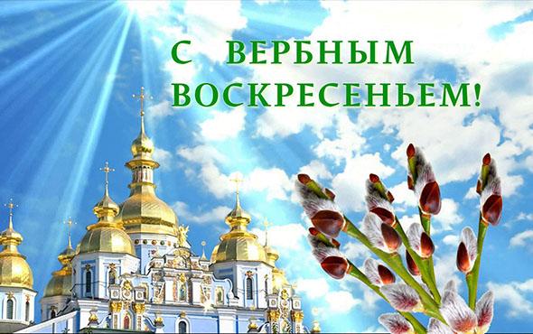 В Днепре к празднику распустились тюльпаны
