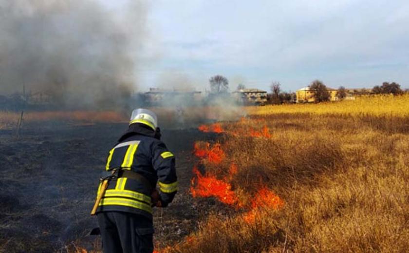 На Днепропетровщине сгорели 83 гектара экосистем ФОТО