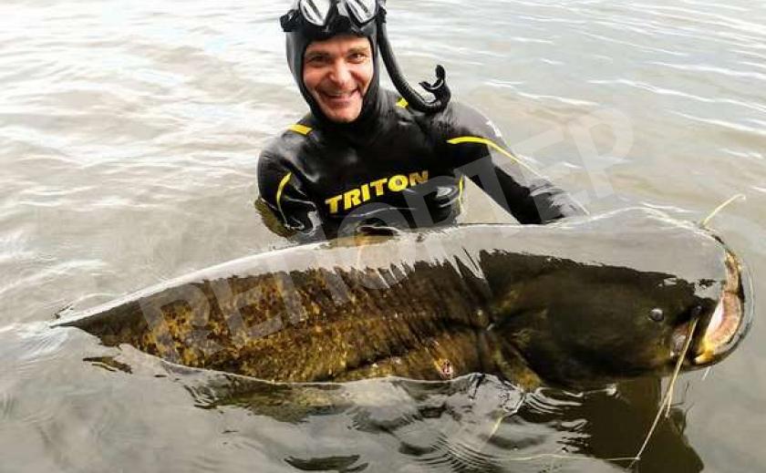 Опубликованы рекорды днепровских рыболовов: сом-гигант и мощный толстолобик