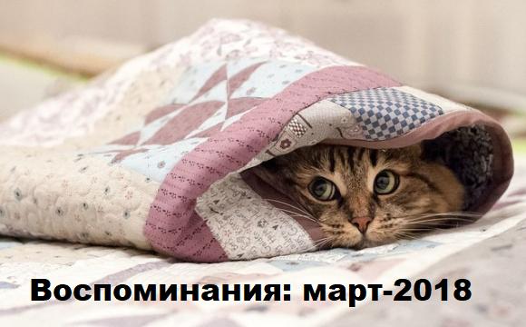 Днепряне, радуйтесь теплу и вспомните холодный март 2018-го ФОТО