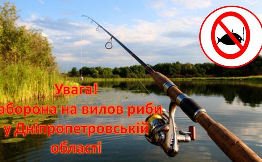 С 25 марта в Приднепровье можно рыбачить только с берега