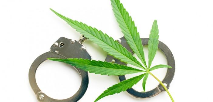 В Синельниково у мужчины изъяли мешок марихуаны ФОТО
