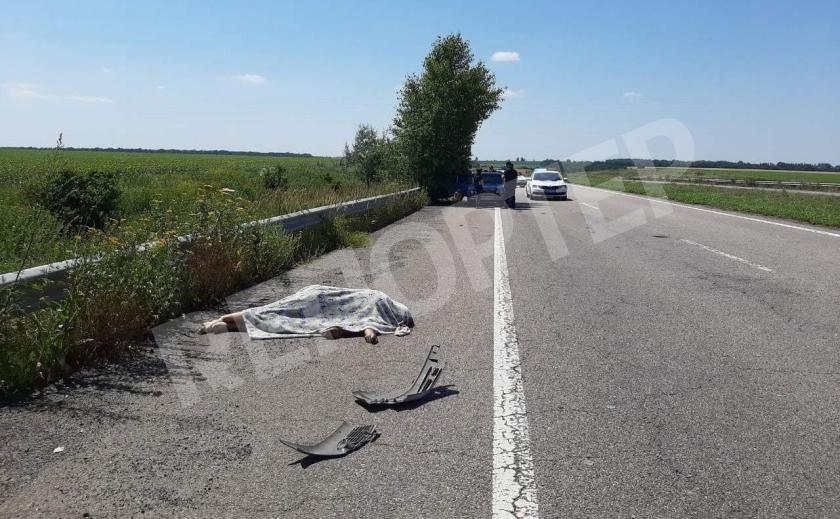 В ДТП под Днепром погиб сотрудник полиции