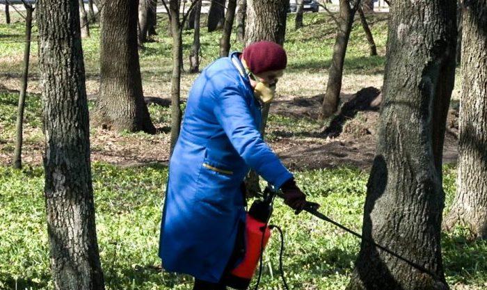 В Павлограде - новая угроза: горожан просят три дня не ходить в парки