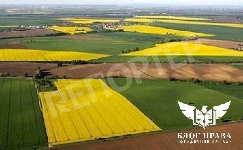 Як отримати витяг про земельну ділянку з Держземкадастру